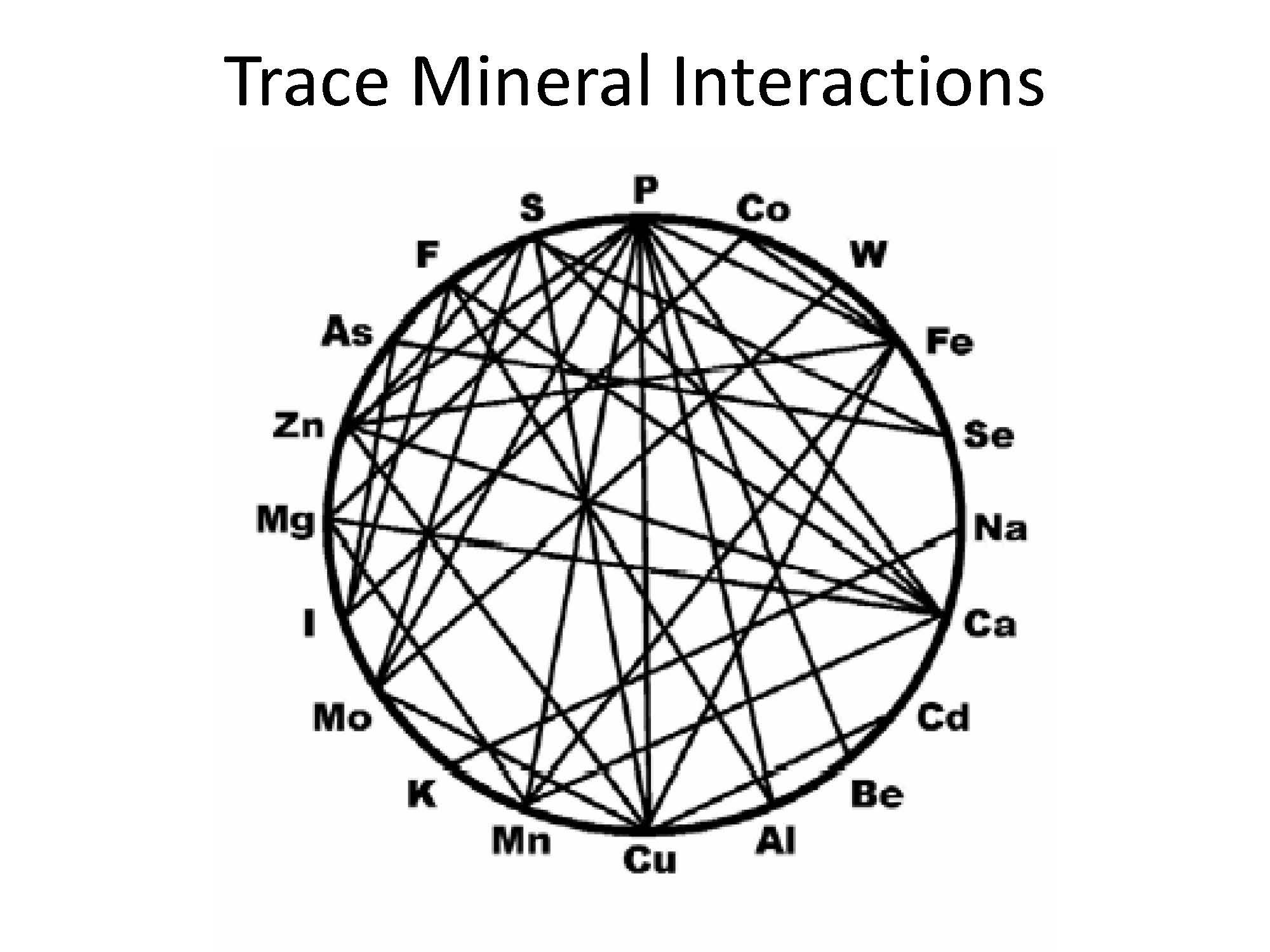 Micro-Minerals: Molybdenum