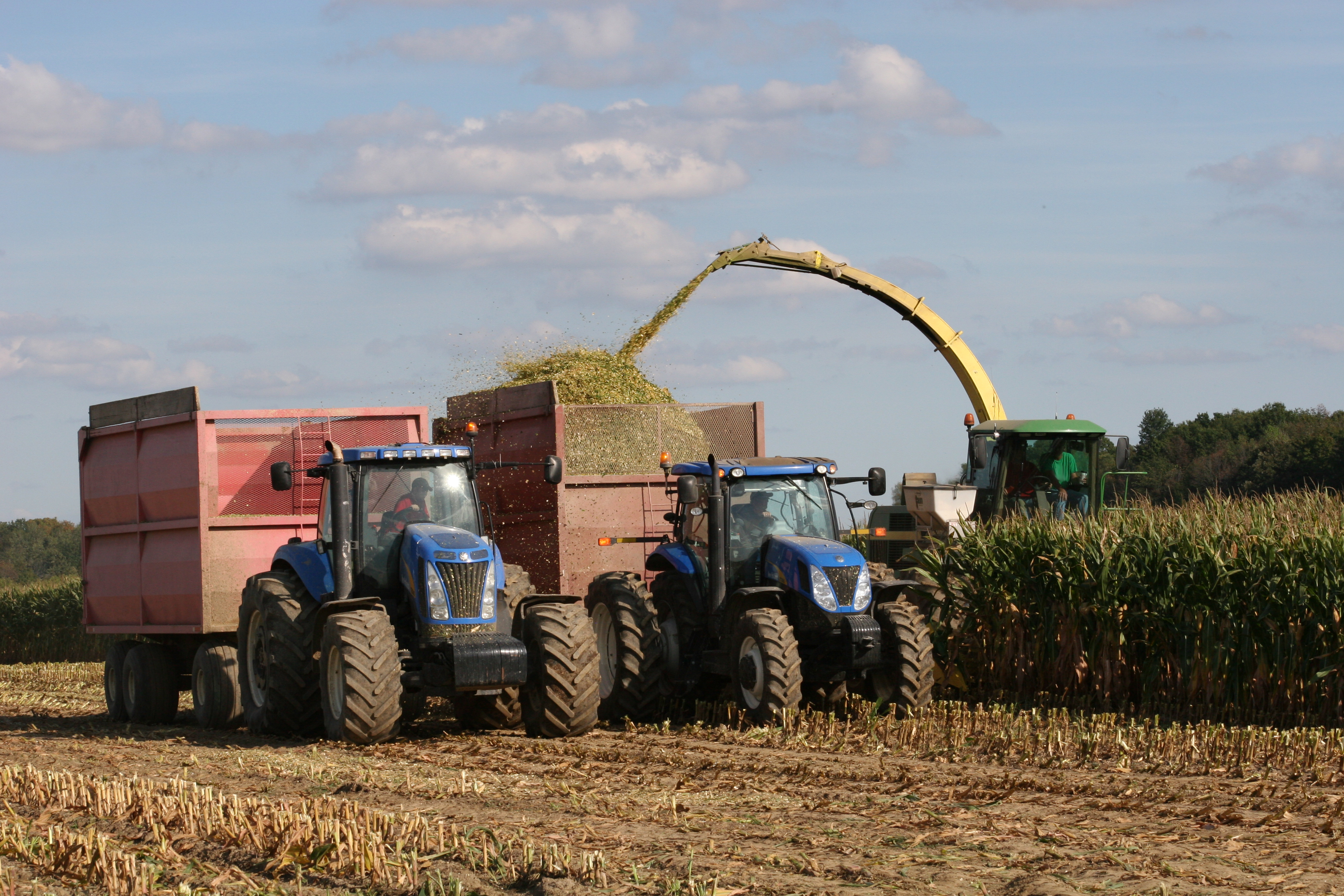 corn harvesting with combines, tractors, and bins