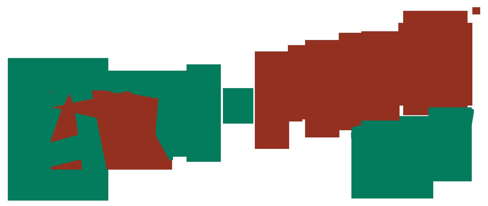 Avi-Max WS Logo