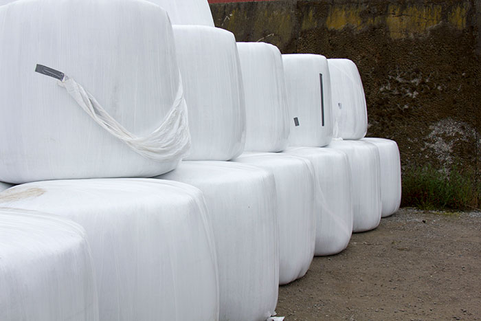 Stacks of rounded white baleage containers